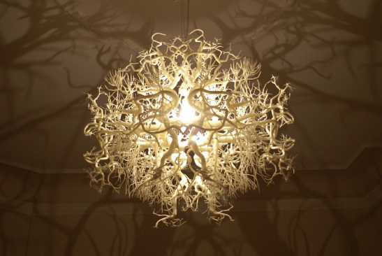 3DPrinting.Lighting_Forms-in-Nature_5